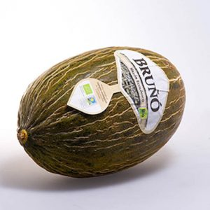 Melon de Bruño